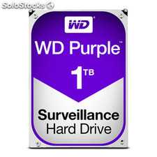 Hd wd purple 1TB 3.5""