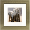 Henzo Africa gold 30x30 with Passepartout 80.485.16