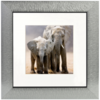 Henzo Africa silver 30x30 with Passepartout 80.485.15