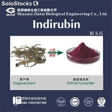 high quality 90% natural indirubin