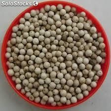 High Quality Organic Black Pepper/White Pepper