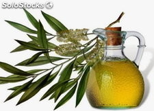 Huile essentielle d'arbre a the (tea tree) (Melaleuca Alternifolia Leaf Oil)