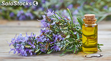 Huile essentielle de romarin ( Rosmarinus officinalis (Rosemary) Leaf Oil )