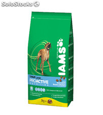 Iams Adult Large Breed 12.00 Kg