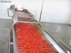 Installer ligne de production concentre de tomate et de puree de piment harissa
