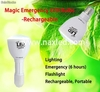 Intelligent Rechargeable 33 LEDs Emergency Light with Built-in Li Ion Battery