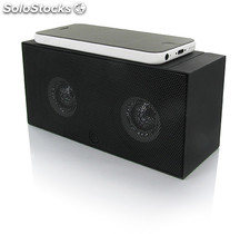 Interaction Amplifying Speaker For All Current Mob