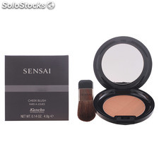 Kanebo cheek blush CH04 4 gr