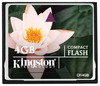 Kingston CF/4GB Memoria CompactFlash 4GB