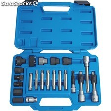 Kit llaves poleas alternador 23 pcs