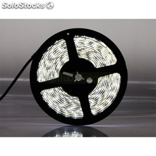 Kit Tira Led Rollo de 5m SMD5050 300Leds Blanco Frío 6000ºK IP20 Uso