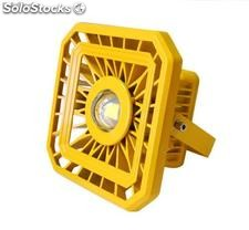 Led Explosion Proof Light-Potencias 50w/60w/80w/100w/120w