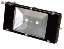 led flood light , led para intemperie tipo reflector 100w Tg012-1