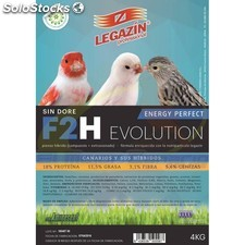 Legazin F2H energy perfect evolution 800gr