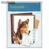 Libro foster animals