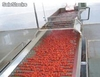 ligne machine de production de concentre de tomate