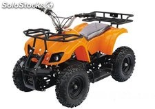 Lote 8X mini atv electrico 800W 6P M7E6061