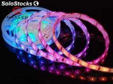 magic color 5050 led strips, 30LEDs/m, ip65