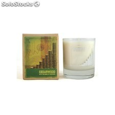 Mans candle vela success, cedro - mans candle - 5060119452027 - c-MC7005