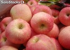 manzana(apple)