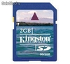 Memoria Kingston SD 2 GB SD/2GB