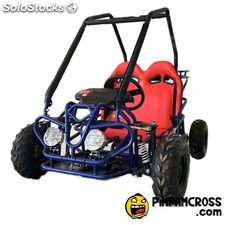mini buggy infaltil 110cc 2 plazas