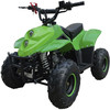 Mini quad 110CC - atv raptor