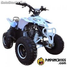 Mini quad 125cc polar portes gratis