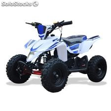Mini quad 49CC roan-leton R6""