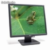 Monitor LCD 19 Acer AL1917 Negro