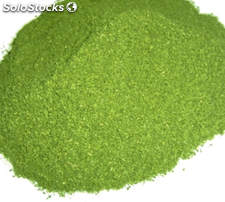 Moringa Leaves Powder os