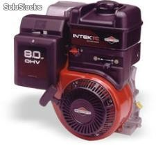 MOTOR DE 8 HP INTEK
