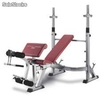 Musculação bh g330 optima press