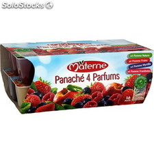 Pack 16X100G panache 4 fruits rouges materne