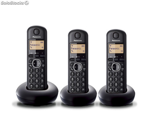 Panasonic kx-TGB213SP