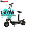 Patinete Eléctrico Raycool Brushless 1500W