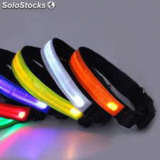 Perro de nylon led nocturna de seguridad Collar intermitente correa