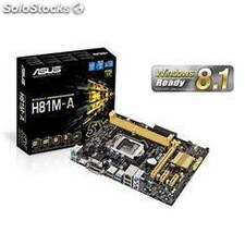 Placa base asus intel h81m-a socket 1150 ddr3x2 1600mhz 16gb dvi-d matx