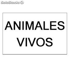 Placa de matricula animales vivos 340x220MM.