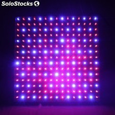 Placa led Grow Rojo/Azul 10W