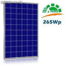 Placa Solar Amerisolar 275W AS-6P30