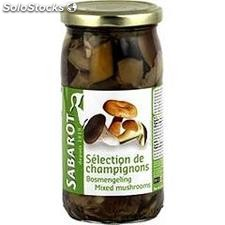 Pot 37CL champignons selection forestiere sabarot