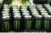 Power horse, red bull, monster energy