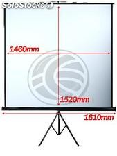 Projection screen with tripod DisplayMATIC 1:1 1460x1520mm (OT12)