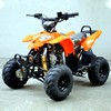 Quad 125CC - modelo polaris