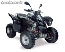 Quad 300CC,adly interceptor ii