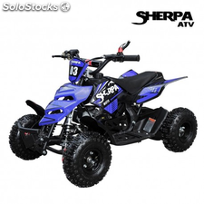 Quad 49CC sherpa monster modelo 2016