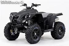 Quad goes 800 rs