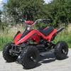 Quad Racer 800w automatique + MA