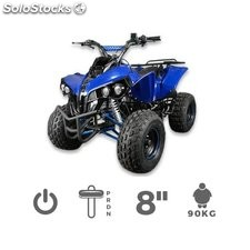 Quad Warrior S8 1000w | Quads
